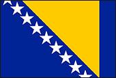 Bosnakça Tercüme Çeviri