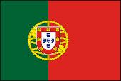 Portekizce Tercüme Çeviri